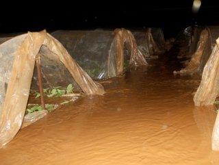 Sağanak yağış Muğla'da seraları olumsuz etkiledi